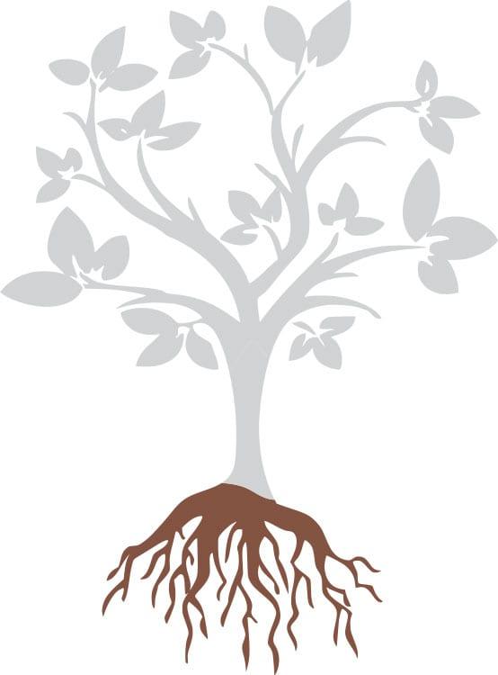Leadership Cohort: Designing Antiracist Organizational Practices